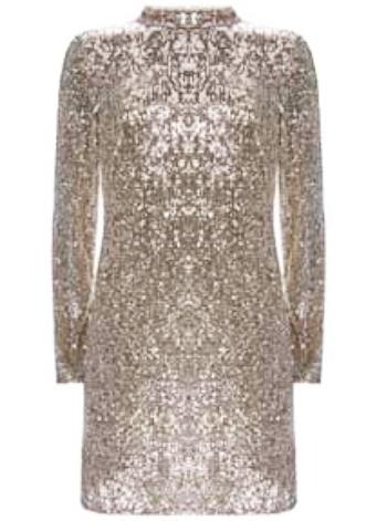 Mini Silver Sequin Dress one